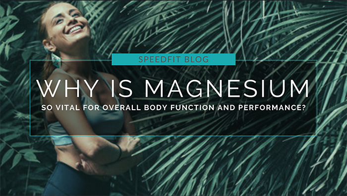 Why is Magnesium So Vital for Overall Body Function and Performance?